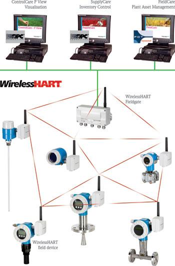 endress hauser 39 s wirelesshart february 2012 endress hauser sa instrumentation control. Black Bedroom Furniture Sets. Home Design Ideas